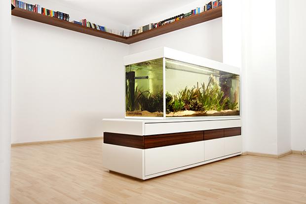 download image 620 x 413 aquarien raumteiler